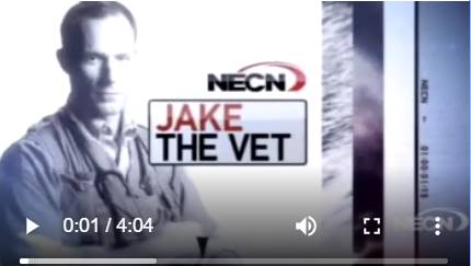 Vetcall - Dr. Jake on TV